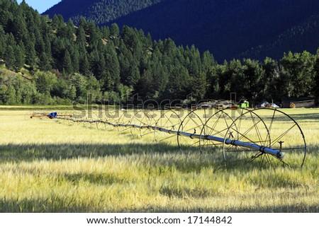 Farming Irrigation - stock photo