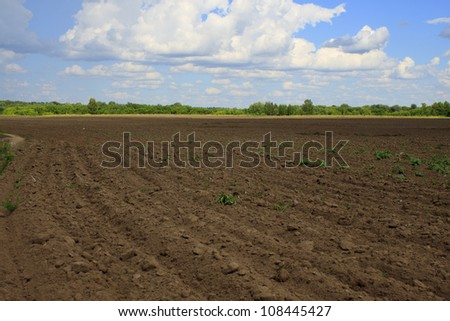 Farming Rows seeds plalnted - stock photo