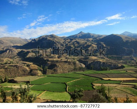 Farming terraces in the Colca Valley, Peru - stock photo