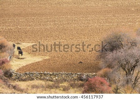 Farmland freshly ploughed and awaiting the planting season, China. - stock photo
