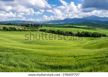 Farmland in Val d'Orcia Tuscany - stock photo