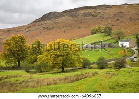 farmland next to Ashness Bridge, Borrowdale, Lake District, Cumbria, UK - stock photo