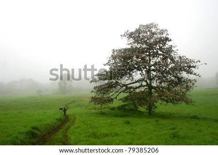 Father and Son Walking through Meadow - stock photo