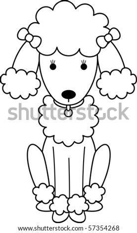 Fe-Fe the Poodle - stock photo