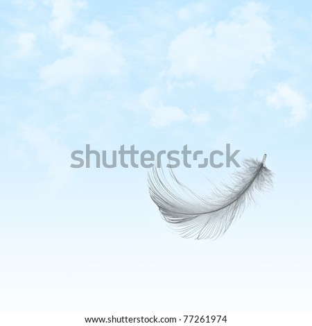 Feather flying in sky with clouds - stock photo