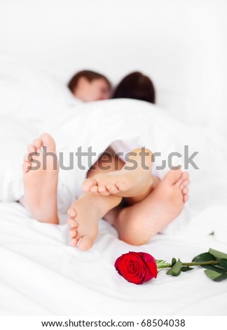 feet of a young couple on the bed at home with a rose lying on the bed  (focus on the flower) - stock photo