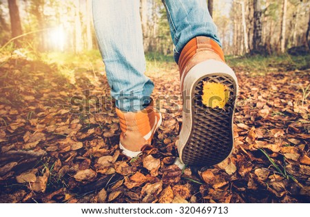 Feet sneakers walking on fall leaves Outdoor with Autumn season nature on background Lifestyle Fashion trendy style - stock photo