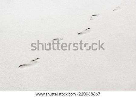 feet trail on sand - stock photo