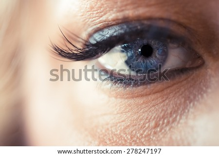 female blue eyes, close up photo - stock photo