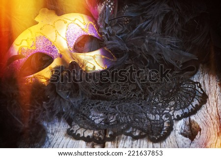 female carnival mask - stock photo