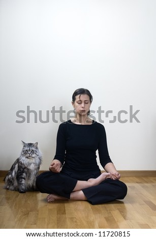 female doing yoga with her maine coon - stock photo