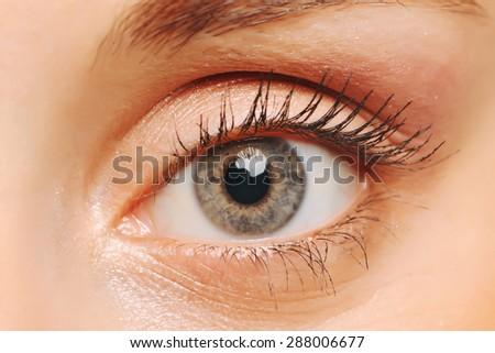 Female eye with long eyelashes closeup. Human eye. - stock photo