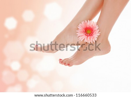 Female feet with pink gerbera flower on pastel blurred background with a space for your text - stock photo