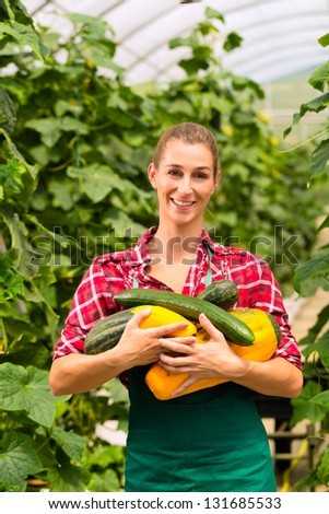 Female gardener at market gardening or nursery with apron and vegetables - stock photo