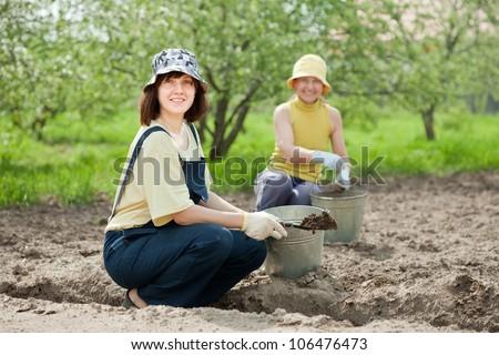 Female gardeners fertilizes the soil in garden - stock photo