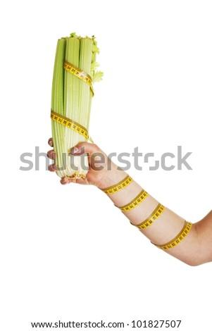 Female hand holding celery isolated on white background - stock photo