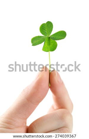 Female hand holding green clover leaf, isolated on white - stock photo