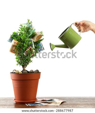 Female hand watering decorative tree in pot with money isolated on white - stock photo