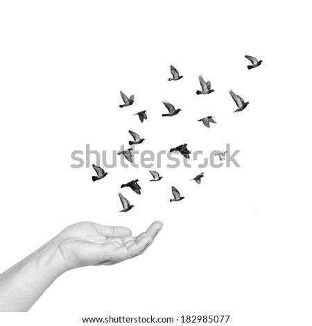 Female hand with open palm to set pigeons flying free. Black and white isolated - stock photo