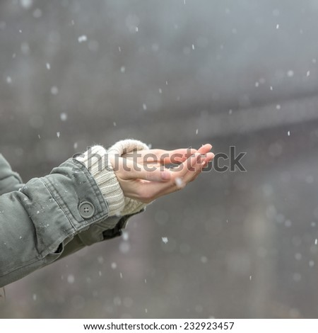 Female hands catching first snow over dark forest background. Winter joy concept - stock photo