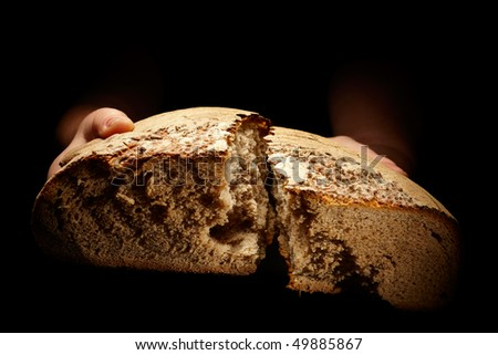 female hands dividing a brown loaf of bread isolated on black - stock photo