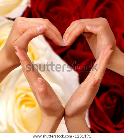 Female hands showing heart sign love concept - stock photo