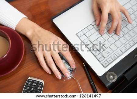 Female hands typing on a laptop - stock photo