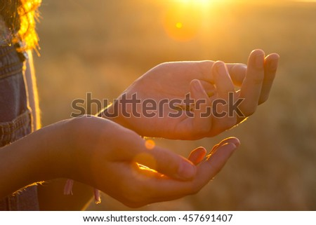female hands with grains of wheat in sunset time - stock photo