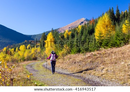 Female Hiker with Backpack and Trekking Pole Walking on Pathway in Autumnal Forest European Rural Landscape Outdoor Sunny Day - stock photo