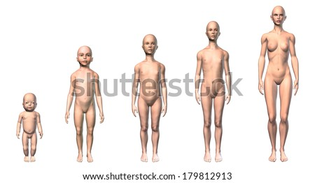 Growth stages Stock Photos, Images, & Pictures | Shutterstock