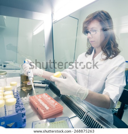 Female life scientist researching in laboratory, pipetting cell culture medium samples in laminar flow. Photo taken from laminar interior. - stock photo