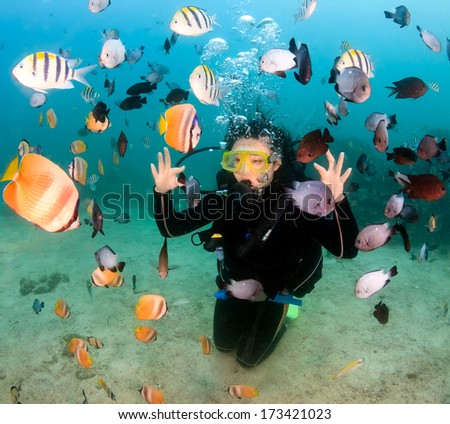 Female SCUBA diver and tropical fish - stock photo