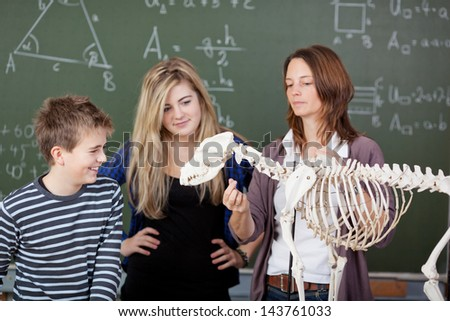 Female teacher explaining dinosaur skeleton parts to students in biology class - stock photo