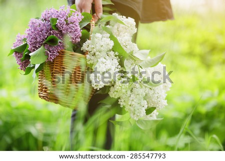 female teen girl hold basket full of lilac flowers, sunny day photo - stock photo