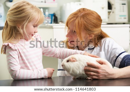 Female Veterinary Surgeon Examining Child's Guinea Pig In Surgery - stock photo