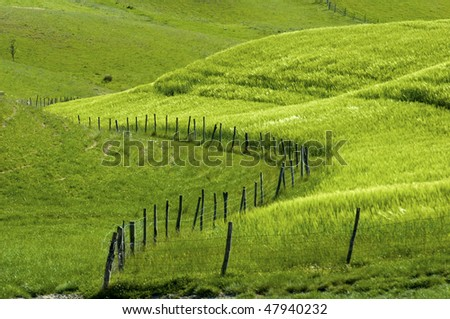 Fence and fields, in the Tuscany region of Italy. - stock photo