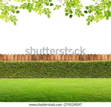 fence and green grass on isolated. - stock photo