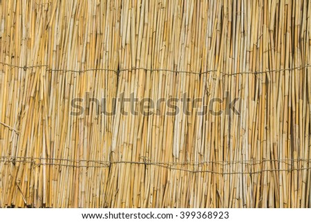 fence from the dry reed - stock photo