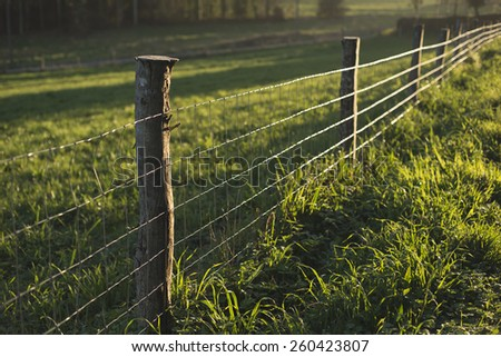 Fence in a field in a rural area of Galicia with the evening light - stock photo