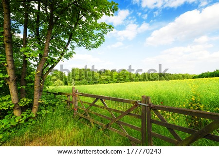 Fence in the green field under blue sky - stock photo