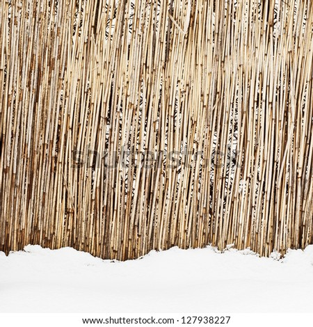 fence of dry cane in winter - stock photo