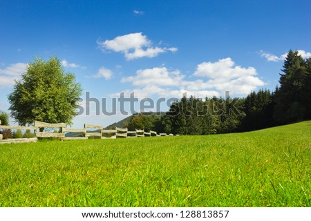 fence on a large lawn in Alsace, France - stock photo