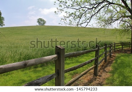 Fenced meadow with lone tree - stock photo