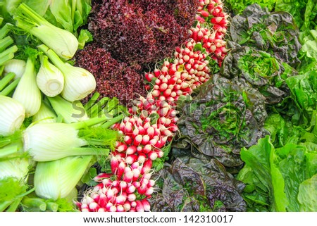 Fennel, lettuce and radishes for a salad, Borough Market London - stock photo