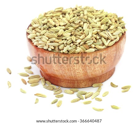 Fennel seeds in a bowl over white background - stock photo
