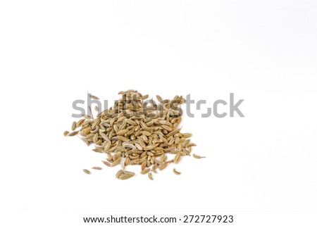 Fennel seeds on white background - forty five degree view - stock photo