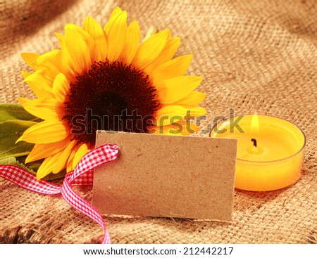 Festive Christmas sunflower background with a vibrant yellow fresh sunflower and burning orange candle with a blank gift tag or card tied with a red and white checked ribbon on hessian - stock photo