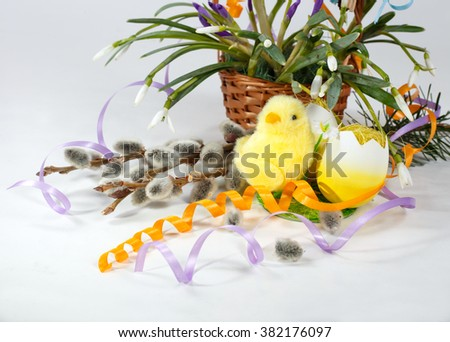 festive Easter composition. Basket of snowdrops, blooming willow branches, yellow colored eggs and cute little chick. Easter theme. happy Easter - stock photo