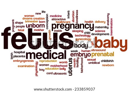 Fetus word cloud concept - stock photo