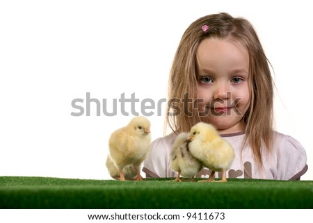 Few baby chickens and five years old girl playing with them over white background - studio shot. - stock photo